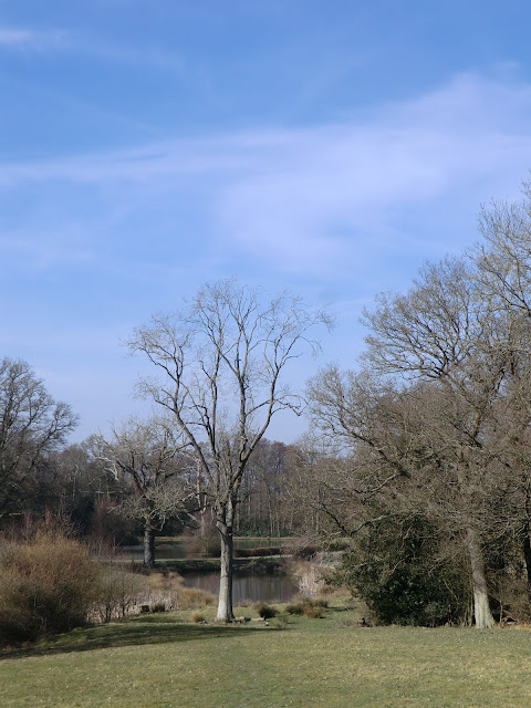 CIMG5827 Looking back towards Ockhams pond