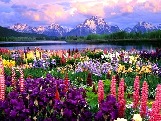 Места мира где правит цвет