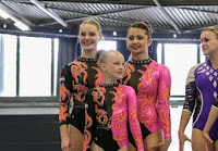 Han Balk Fantastic Gymnastics 2015-9031.jpg