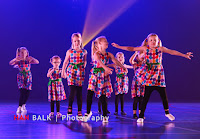 Han Balk Voorster Dansdag 2016-4418-2.jpg