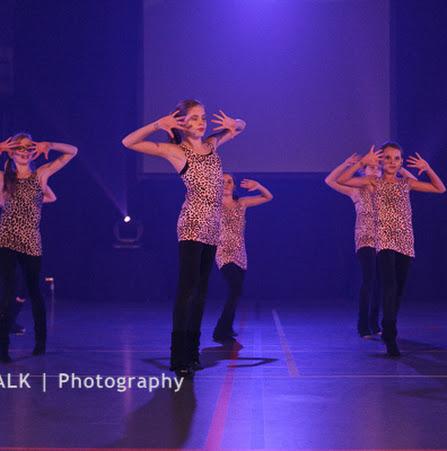 Han Balk Voorster dansdag 2015 ochtend-4004.jpg