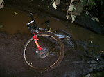 I fell over in the middle of this mud pit...and my chain broke