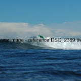 DSC_2389.thumb.jpg