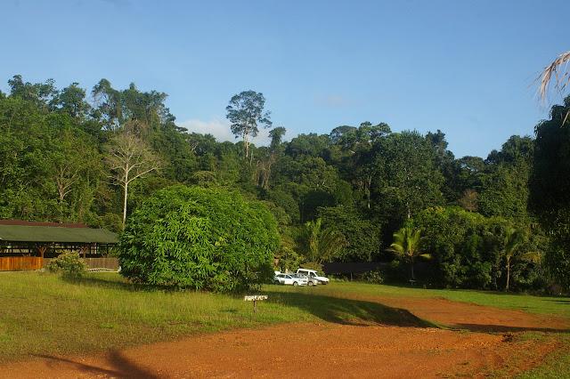Camp Patawa, Montagne de Kaw (Guyane). 16 novembre 2011. Photo : J.-M. Gayman