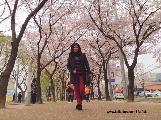 bercuti ke korea, tempat menarik di Korea