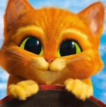 Katzy Baby