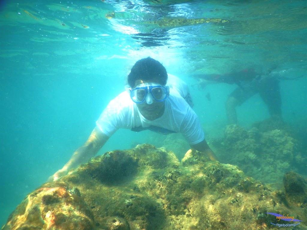 pulau pari, 23-24 mei 2015 16