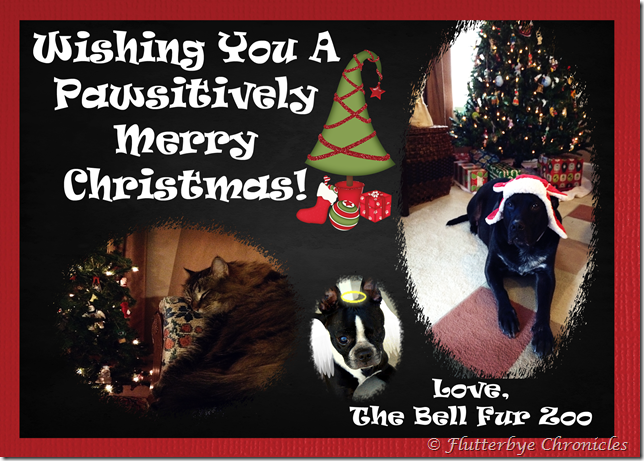 Bell Fur Zoo Christmas Card