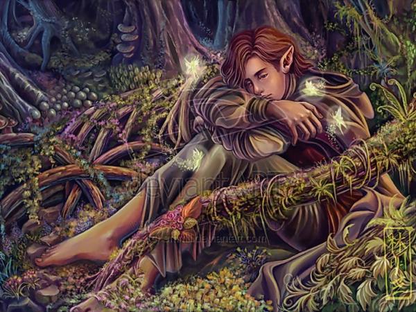 Charming Faerie Eyes, Fairies 2
