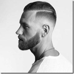 Mens beard fade