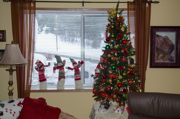 Daytime Christmas on Old Fort Road (2 of 8)