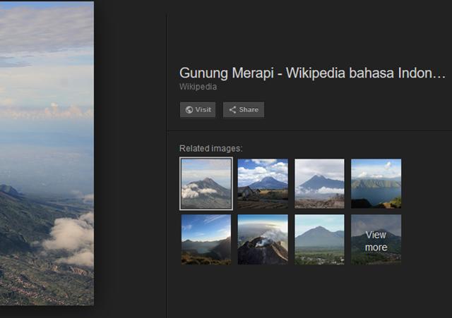 google menghapus tombol visit image pada hasil pencarian gambar google image