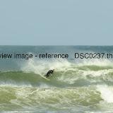 _DSC0237.thumb.jpg