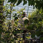20140731_Fishing_Tuchyn_091.jpg