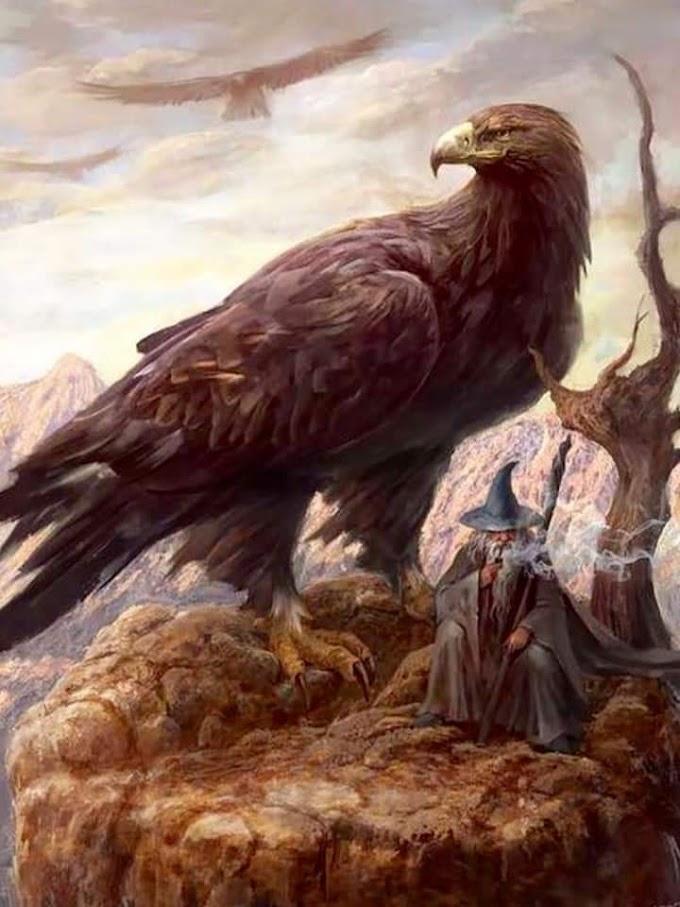 El Mago y El Águila