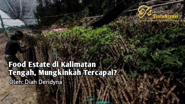Food Estate di Kalimantan Tengah, Mungkinkah Tercapai?