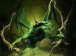 Drangon Lizard