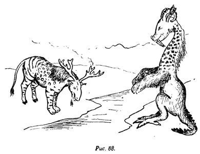 Диковинные звери