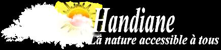 Accueil du site Handiane