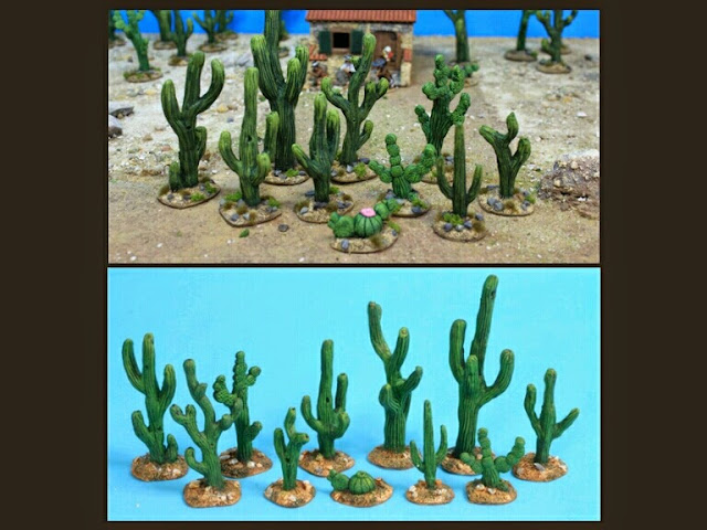 cactus Grandmanner