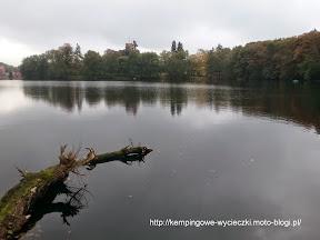 na zdjeciu rezerwat nad jeziorem Trześniowskim