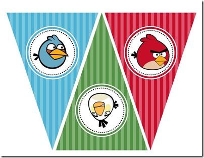 angry_bird cumpleaños (2)