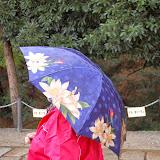 2014 Japan - Dag 8 - jordi-DSC_0487.JPG