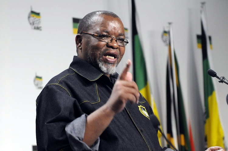 ANC secretary-general Gwede Mantashe . Picture: PUXLEY MAKGATHO
