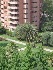 Pics of Garden