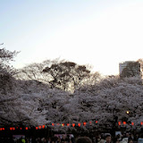 2014 Japan - Dag 1 - tom-SAM_0373-0002.JPG
