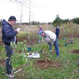Hammo Planting - Shannon Schiesser - IMG_4885.JPG