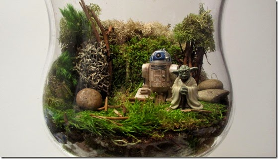 Dagobah-Terrarium-finished-1536x864