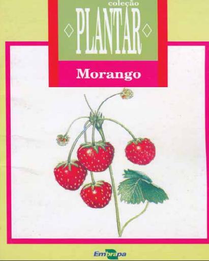 A cultura do morango (Livro Grátis!)
