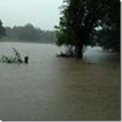 20170828-Harvey_Flood_Damage-Calvery-