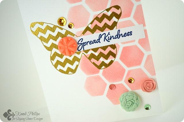 Spread Kindness Closeup