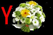 Yandex Anneler Günü
