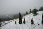 Snow! March 27.