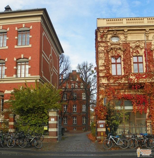 Berlin visitar viajar 20