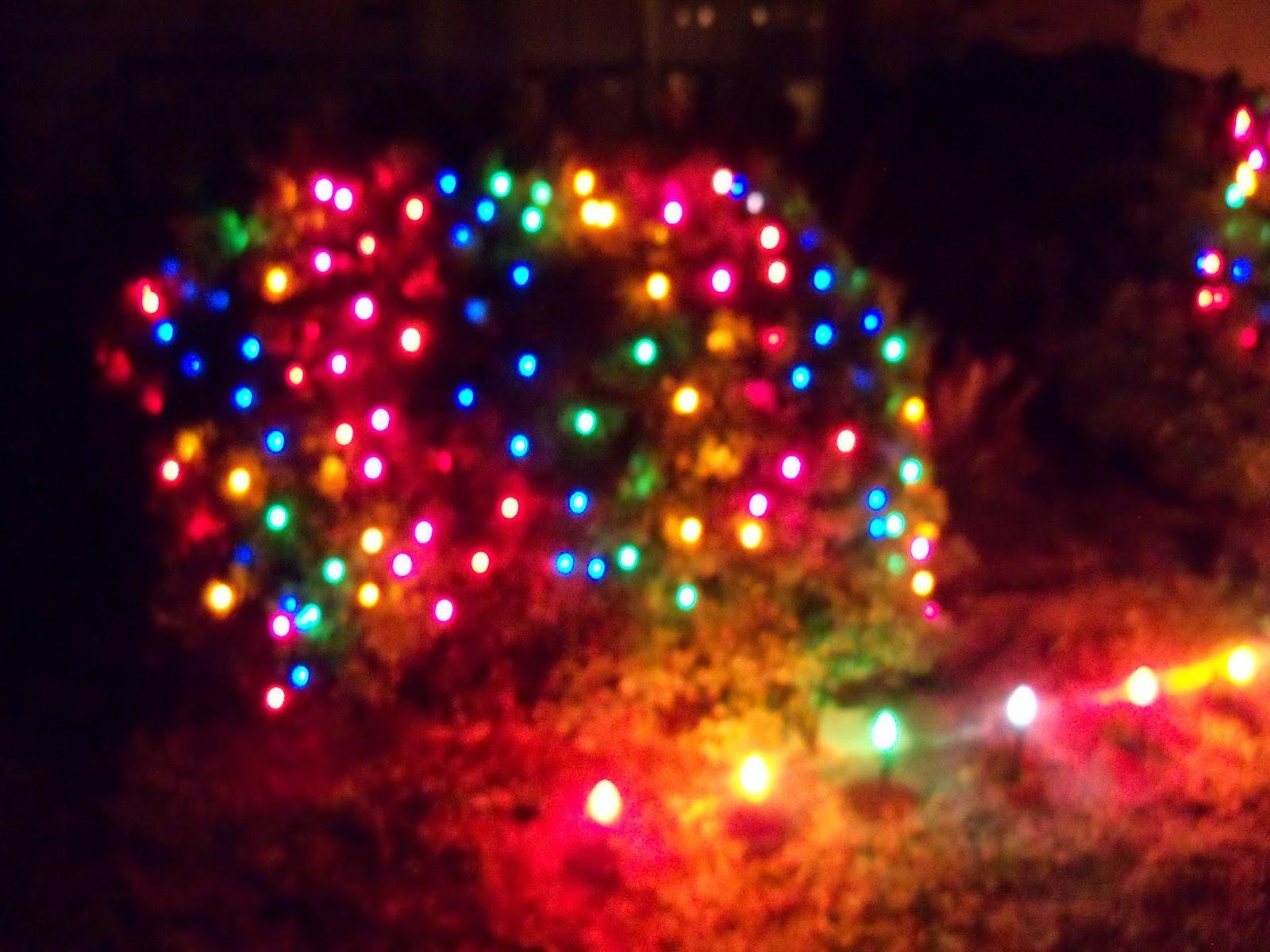 Christmastime - 116_6218.JPG