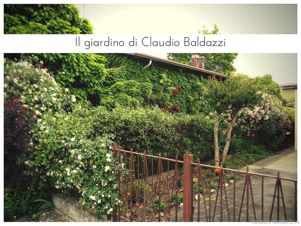 [Il+giardino+di+Claudio+%289%29%5B3%5D]