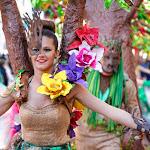 CarnavaldeNavalmoral2015_268.jpg
