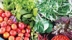 sayur organik depok