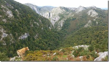 Picos_Covadonga_(12-9-2017) (11)