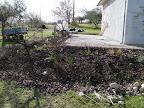 Hier sind 30 Rosen, 12 Büsche, 150 Tulpen, 50 Krokusse, 100 andere Zwiebelpflanzen vergraben.... oh oh, viele viele Löcher zu buddeln.