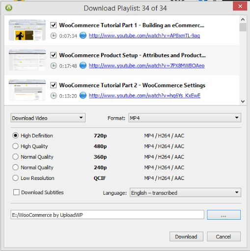 Download Playlist Format