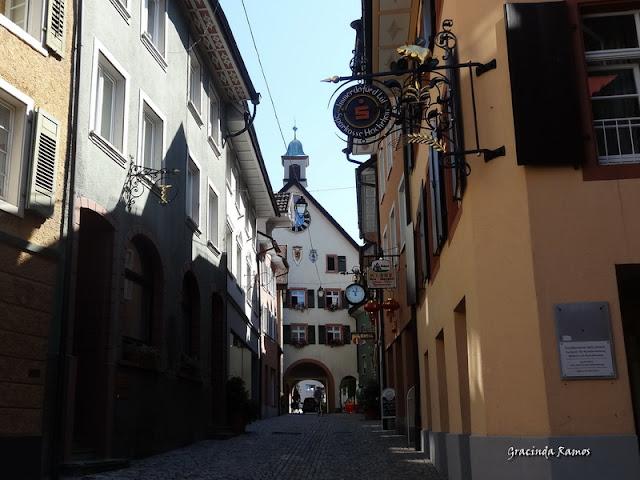 passeando - Passeando pela Suíça - 2012 - Página 14 DSC04928