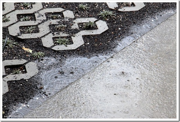 160308_rain_1