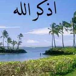 Ali Hamad Photo 20