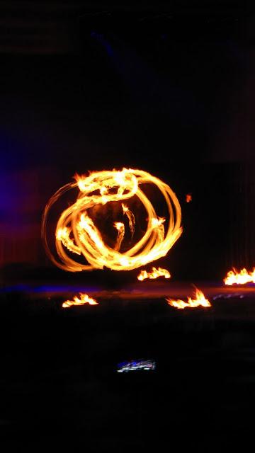 Festiwal Rytmu i Ognia FROG 2011 - www14.JPG