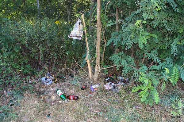 Кругом на березі отаке сміття